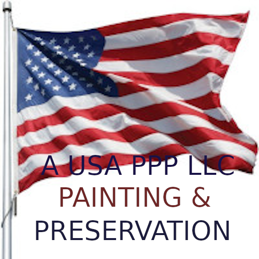 A USA PPP LLC